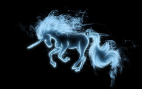 Picture mane, unicorn, tail, black background