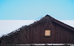 Picture winter, roof, house, minimalism