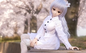 Picture clothing, toy, doll, white, sitting, long hair