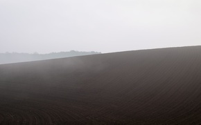 Picture field, nature, fog