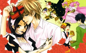 Picture girl, anime, art, pair, guy, Kaichou wa Maid-sama!
