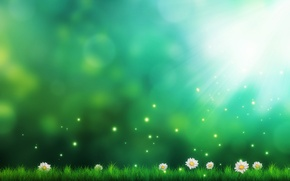 Picture grass, flowers, figure, chamomile, art, sparks, green background