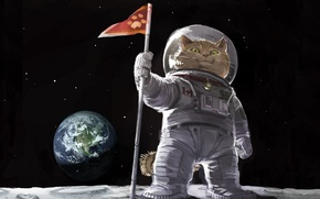Picture cat, space, picture, flag, art, painting, Tomcat, painting, earth., the suit, landing on the moon