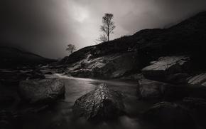 Picture night, river, stones, tree, Scotland