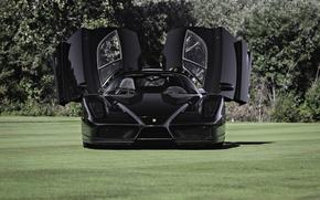 Picture black, shadow, ferrari, Ferrari, black, enzo, the front, doors, Enzo