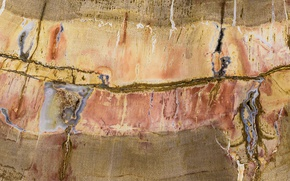 Picture stone, color, texture