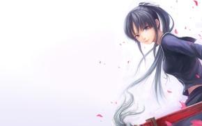 Wallpaper girl, sword, katana, petals, form, Isaiah yomi my, ga-rei zero