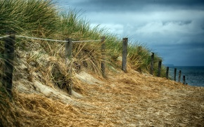Picture beach, the fence, dunes