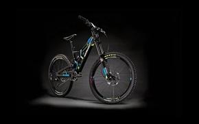 Picture bike, bicycle, bike, Flatline, RockyMountain