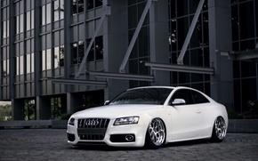 Picture Audi, Audi, tuning, white, white