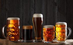 Wallpaper beer, beer mugs, alcoholic beverages