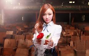 Picture smoke, rose, focus, Oriental girl