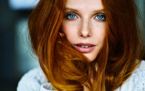 Picture look, face, hair, portrait, red, blue eyes, redhead, blue-eyed