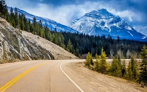 Picture road, forest, trees, landscape, mountains, rocks, turn, ate, Canada, Albert, Alberta, Canada, Jasper National Park, ...