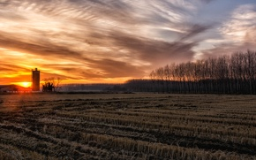 Picture field, the sky, sunset