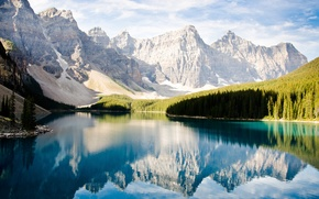 Picture forest, mountains, lake, reflection