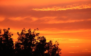Picture summer, the sky, clouds, sunset, orange, Golden sunset