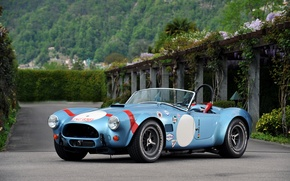 Picture Roadster, Ford, Shelby, Cobra, Ford, classic, Shelby, Cobra, 1964, 289, FIA Competition