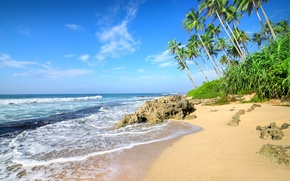 Wallpaper sand, sea, beach, palm trees, shore, summer, beach, sea, sand, shore, paradise, palms, tropical