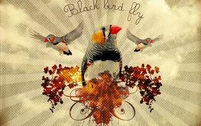 Wallpaper branch, strip, Birds