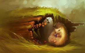 Wallpaper forest, berries, tree, mushrooms, Hedgehog, art
