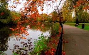 Picture autumn, forest, the sky, leaves, water, trees, bench, nature, Park, river, view, hdr, walk, forest, …
