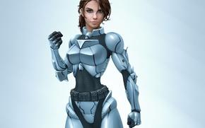 Picture armor, art, hero, Layla