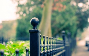 Picture leaves, macro, trees, background, widescreen, Wallpaper, the fence, blur, fence, the fence, wallpaper, widescreen, background, ...
