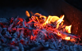 Picture fire, flame, coal, light