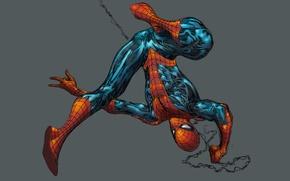 Picture grey background, Marvel Comics, Spider-Man, Spider-Man