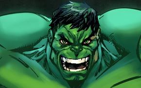 Picture superhero, Hulk, marvel, Marvel Heroes, The Hulk, trading card steam