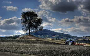 Picture field, tree, tractor