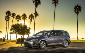 Picture palm trees, grey, Chrysler, Hybrid, Pacifica