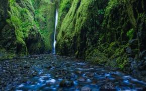 Wallpaper river, stones, rocks, waterfall, moss, Oregon, gorge, Oregon, Columbia River, Columbia River Gorge, the Columbia ...