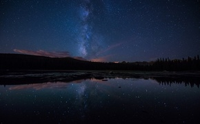 Picture forest, stars, night, lake, reflection, the milky way