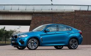 Picture F16, SUV, 2015, ZA-spec, BMW, BMW