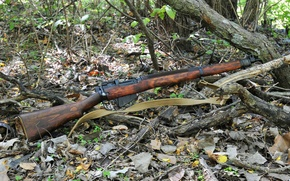 Picture weapons, rifle, Lee-Enfield, Lee-Enfield