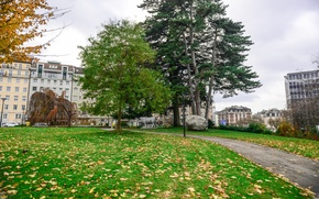 Picture autumn, trees, Park, building, Switzerland, track, falling leaves, trees, park, autumn, leaves, path, fall, Geneva