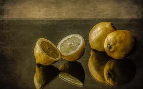 Picture reflection, citrus, still life, lemons