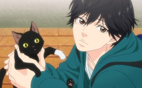 Picture Cat, Male, Screenshot, Mabuchi Ko, Ao Haru Ride