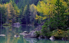 Picture autumn, forest, trees, mountains, lake, stones