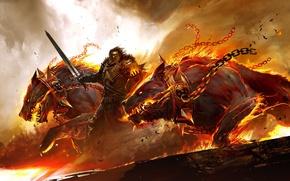 Wallpaper fire, sword, armor, warrior, collar, chain, Guild Wars 2, dogs, Cerberus