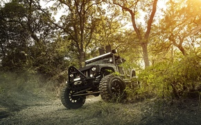 Picture Nature, Cars, Wrangler, Jeep, Off Road, FullMetalGunner
