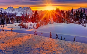 Picture winter, forest, the sky, the sun, rays, snow, trees, sunset, mountains, USA, washington