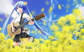 Picture field, girl, flowers, guitar, art, vocaloid, hatsune miku, musical instrument, nekobaka