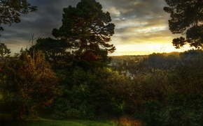 Picture forest, sunset, nature, the city, photo, dawn, New Zealand