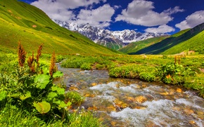 Picture the sky, grass, river, landscape, nature, meadows