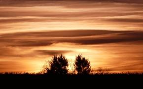 Picture sunset, evening, sun, sundown
