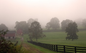 Picture field, trees, fog, village, morning, Autumn, track, trees, nature, autumn, morning, fog, village, path