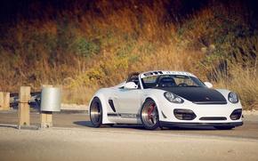 Picture Porsche, white, Boxster, Spyder